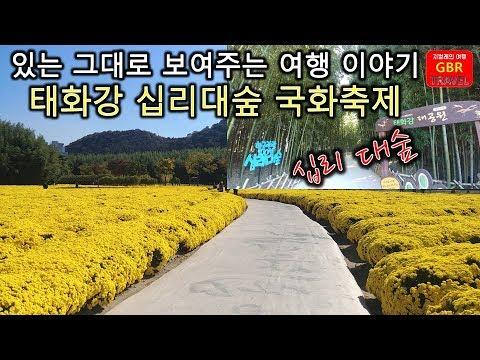 DCM_20201007011610dy2.jpg